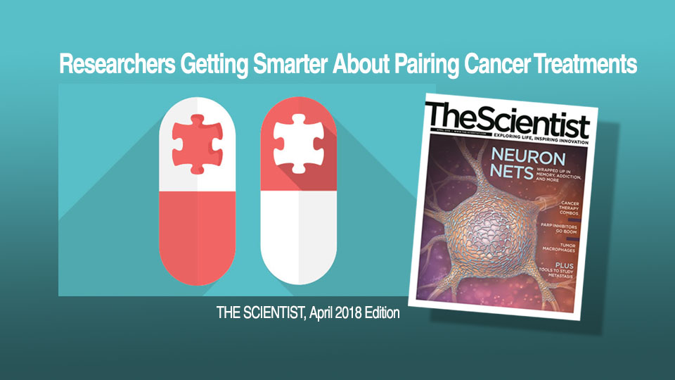 Personalized Drug Combinations Can Lead to Better Results for Cancer Patients